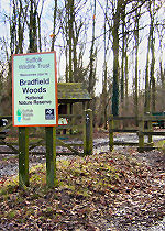 Bradfield Woods